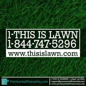 1-this-is-lawn-p-18447475296.jpg