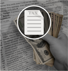 Buy License Tax Preparation and Tax Services toll free vanity phone numbers